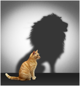 Are You Transmitting Fear or Courage?